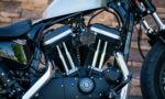 2015 Harley-Davidson XL1200X Forty Eight Sportster Bzs