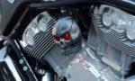2009 Harley-Davidson VRSCF V-rod Muscle C