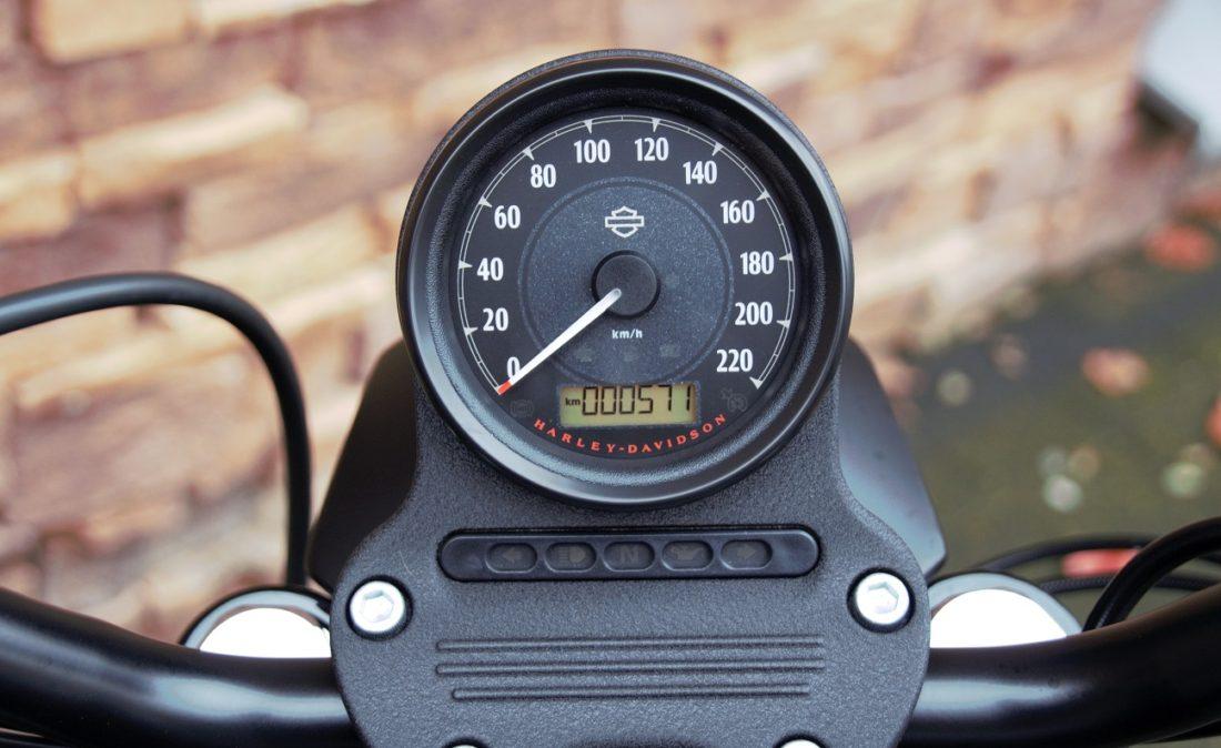 2015 Harley-Davidson XL883N Sportster Iron T