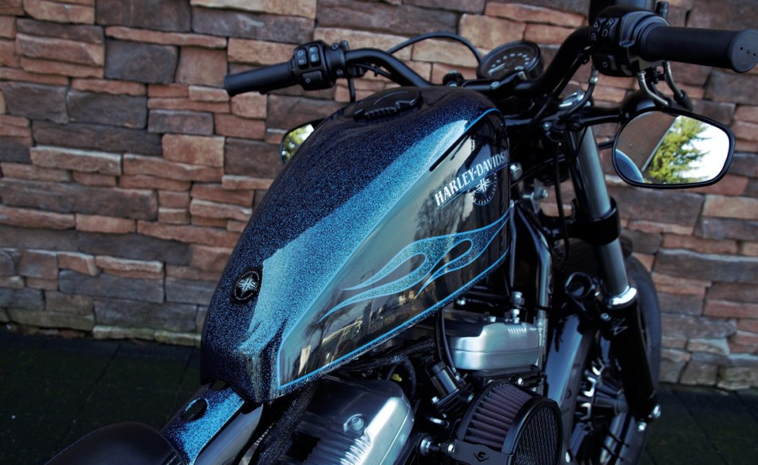 2016 Harley-Davidson XL1200X Forty Eight Sportster Ts
