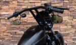 2010 Harley-Davidson XL883N Iron Sportster 883 RD