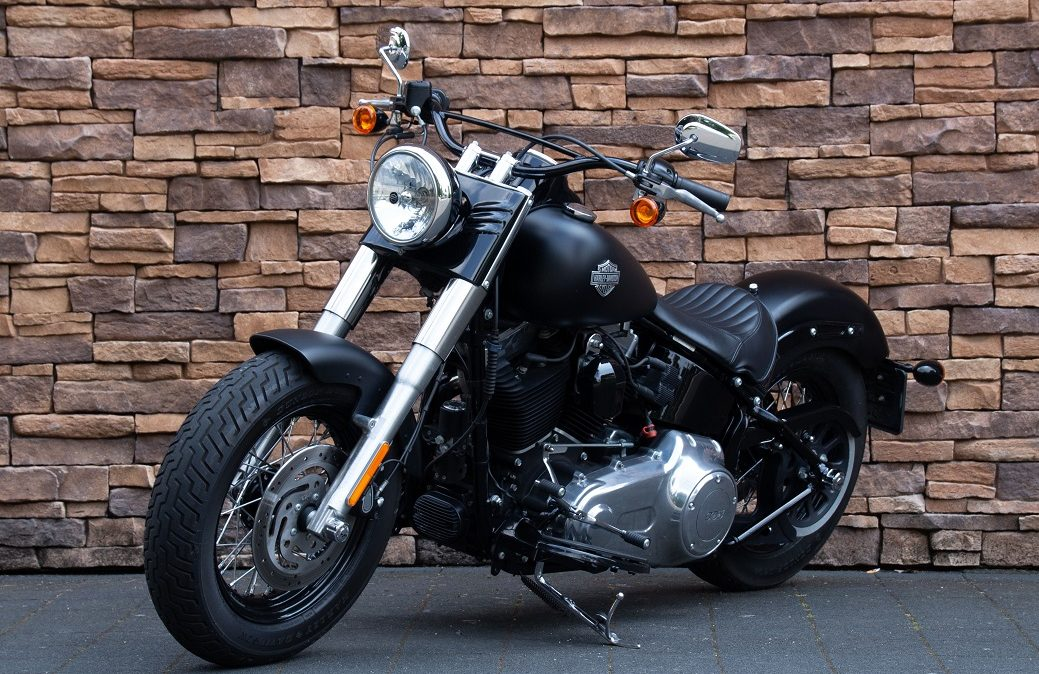 2012 Harley-Davidson FLS Softail Slim 103 LV