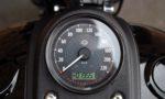 2017 Harley-Davidson FXDLS Low Rider S 110 T