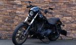 2017 Harley-Davidson FXDLS Low Rider S Dyna 110 Screamin Eagle LV