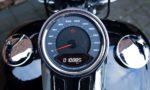 2019 Harley-Davidson FLSB Sport Glide Softail 107 M8 T